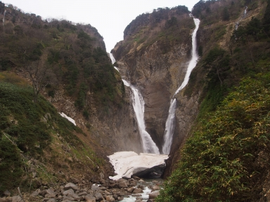 富山県立山町 称名滝 ハンノキ滝
