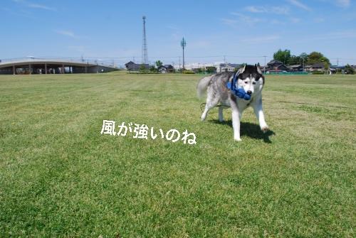 DSC_0194_Fotor.jpg