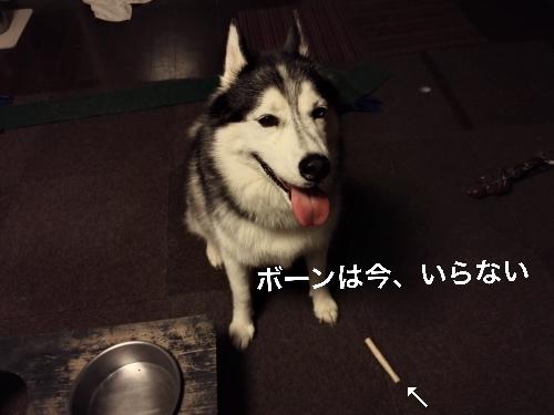 IMG_20160728_210950_Fotor.jpg