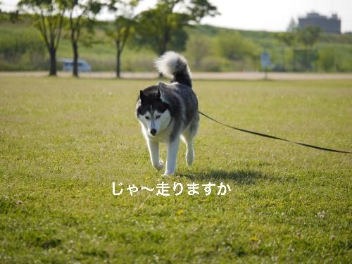 P1010552_Fotor.jpg