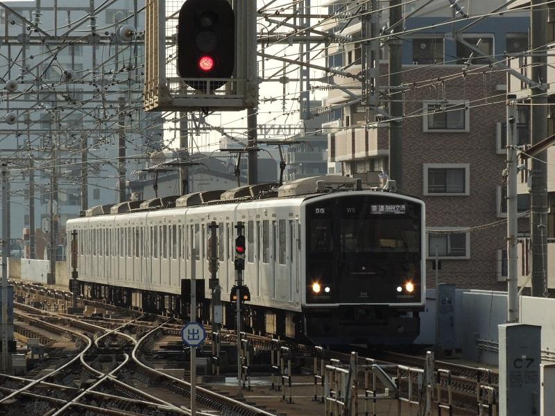 DSCN5901.jpg
