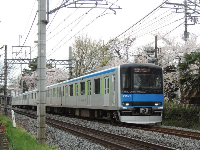 DSCN6561.jpg