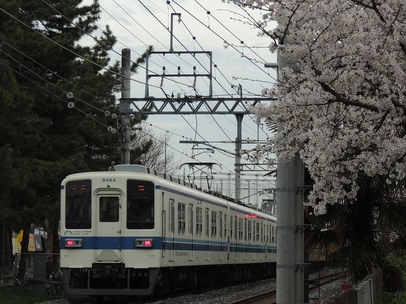 DSCN6570.jpg