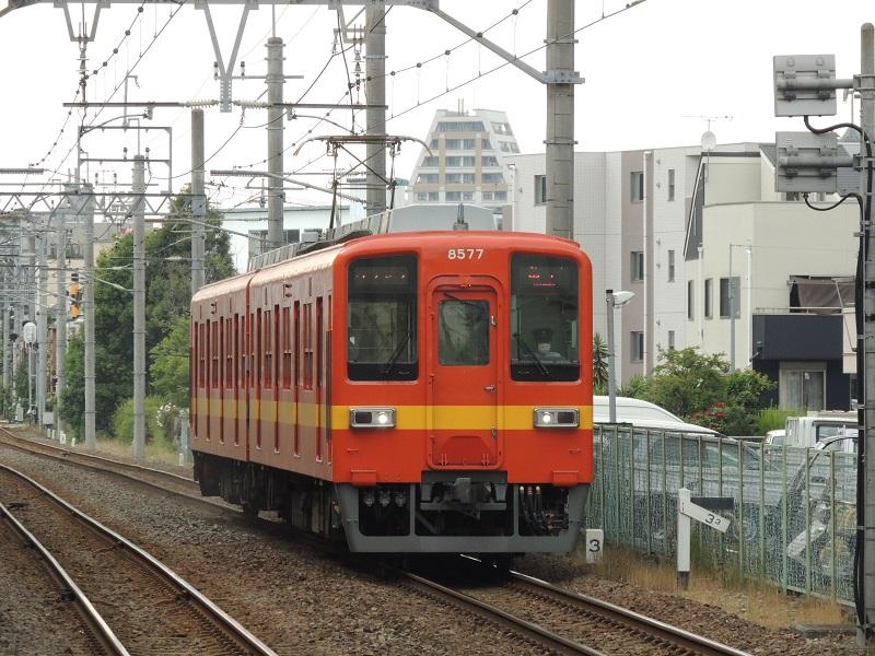 DSCN7188.jpg