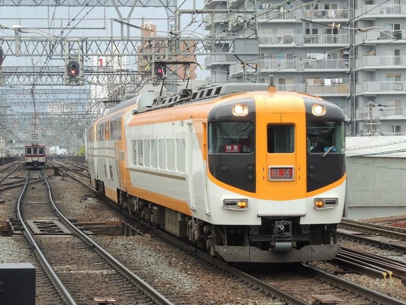 DSCN7249.jpg