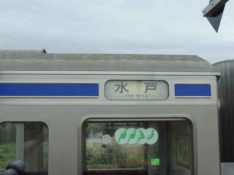 DSCN7817.jpg