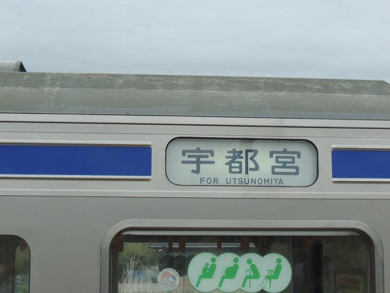 DSCN7831.jpg