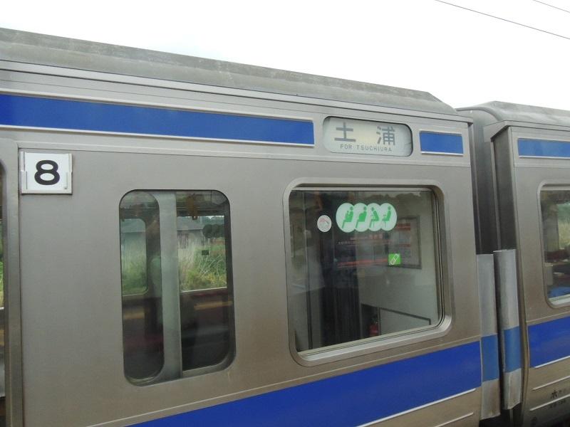 DSCN7842.jpg