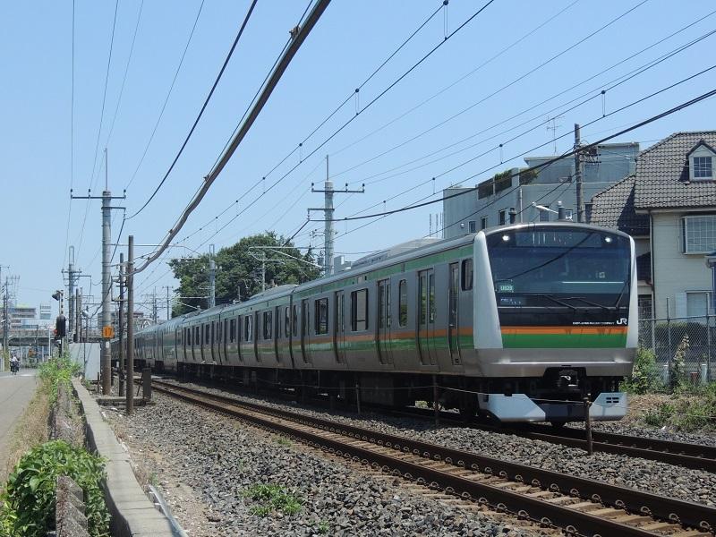 DSCN7917.jpg