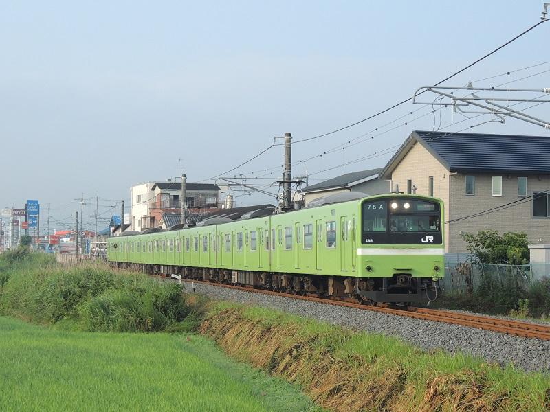 DSCN8289.jpg