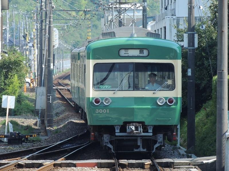 DSCN8308.jpg