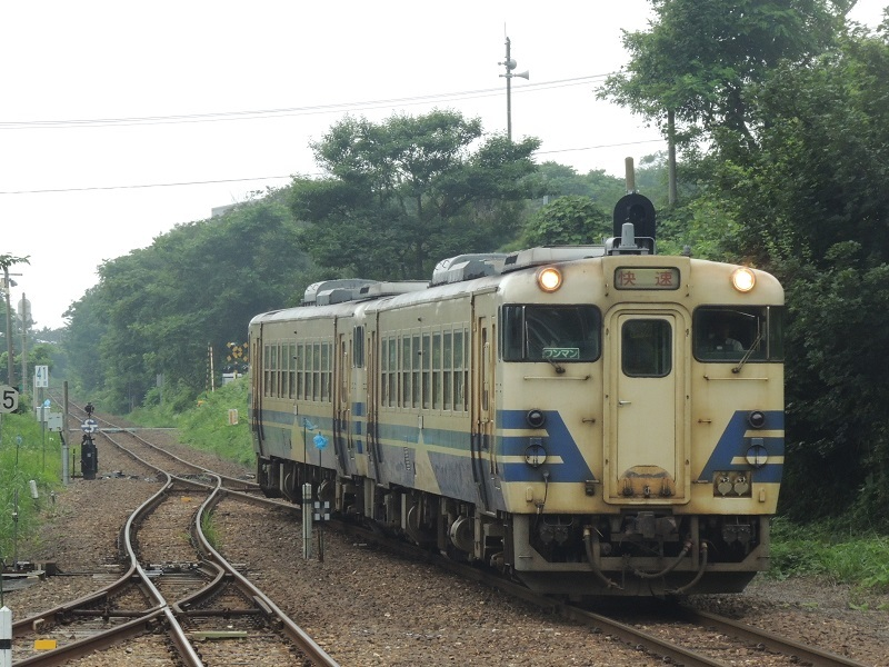 DSCN8411.jpg