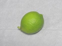 WEB_レモンの収穫2