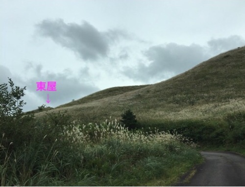 fc2blog_20161107210549be8.jpg