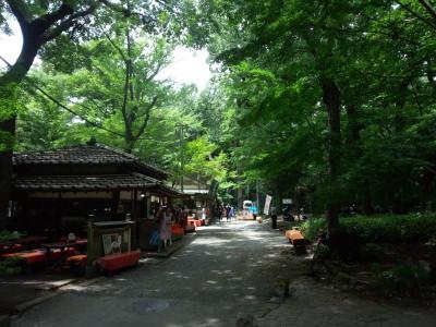多摩川 野川 深大寺