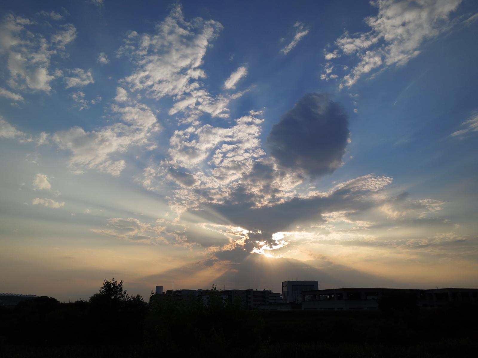 鶴見川で光芒