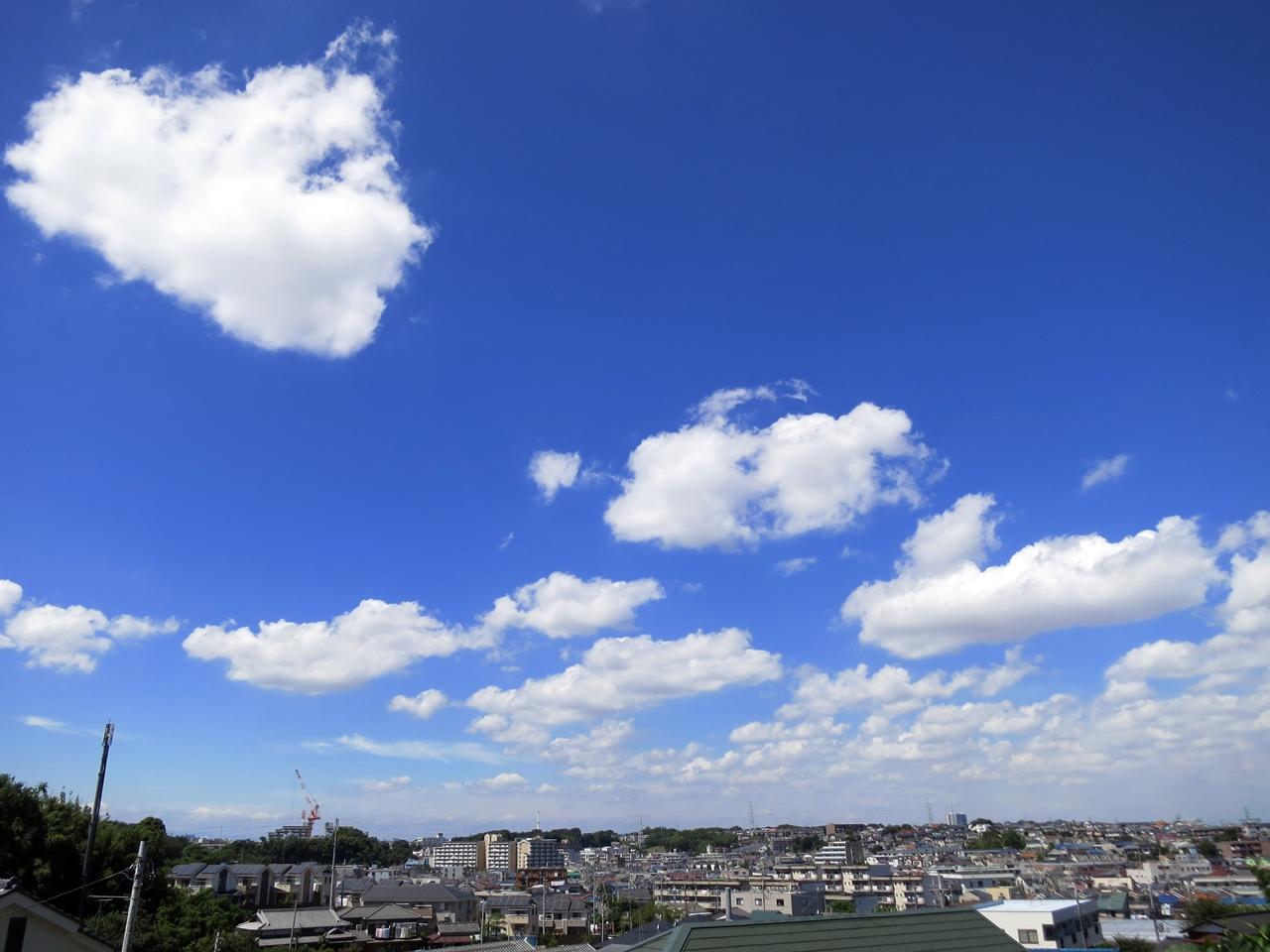 160827新横浜溝の口-10