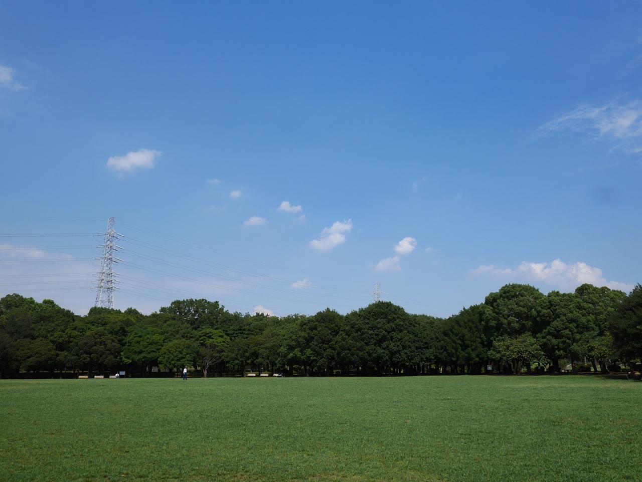 160905岸根公園-01