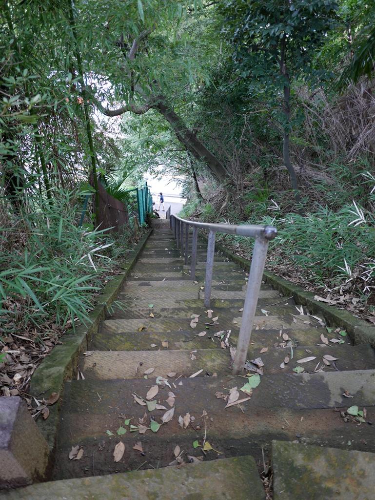 160925武蔵小杉-02