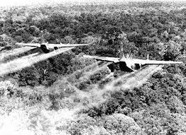 20160802枯れ葉剤散布ベトナム戦争