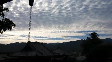 【 吉野の山 】①