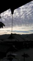 【 吉野の山 】⑤
