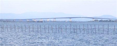 7月23日 琵琶湖大橋が見える場所