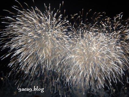 長良川河畔で花火大会2