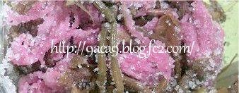 桜の花のお漬物