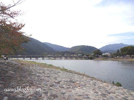 2016 10月20日 今日の京都嵐山 4