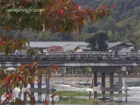 2016 10月20日 今日の京都嵐山 6