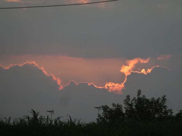 梅雨明け 082