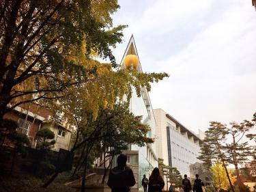 高麗大学。