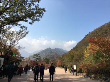 青空が広がり、まさに秋の紅葉狩り日和に!