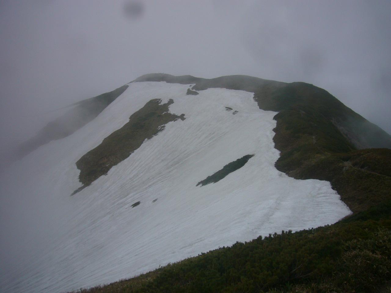 御舎利岳から別山への稜線 H28.5.28