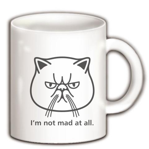 ブサかわ猫