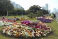 芝生の花壇②