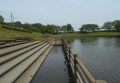 小畔水鳥の郷公園②