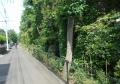 東大和側の緑道に出た