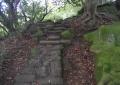 険しい石畳の道