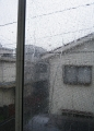 自室の窓から外を見る