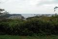 長浦湾(港の見える丘より)