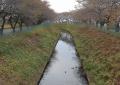 砂川堀用水路