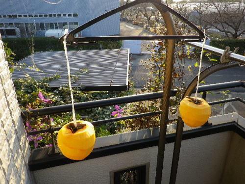 干し柿作り 2016 11 7-2