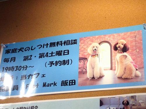 r-3-YOKO.jpg