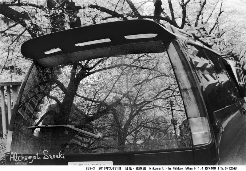 桜と自動車839-3-13 Ⅱ