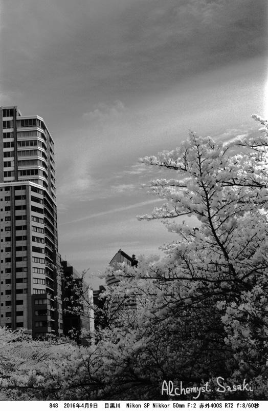 桜848-27