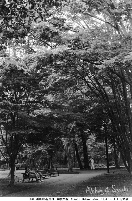 林試の森864-18