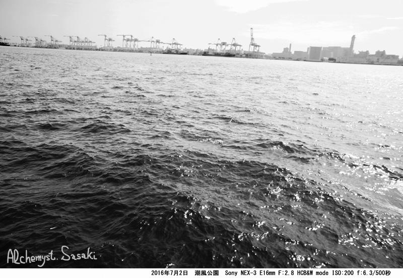 潮風公園DSC08795a