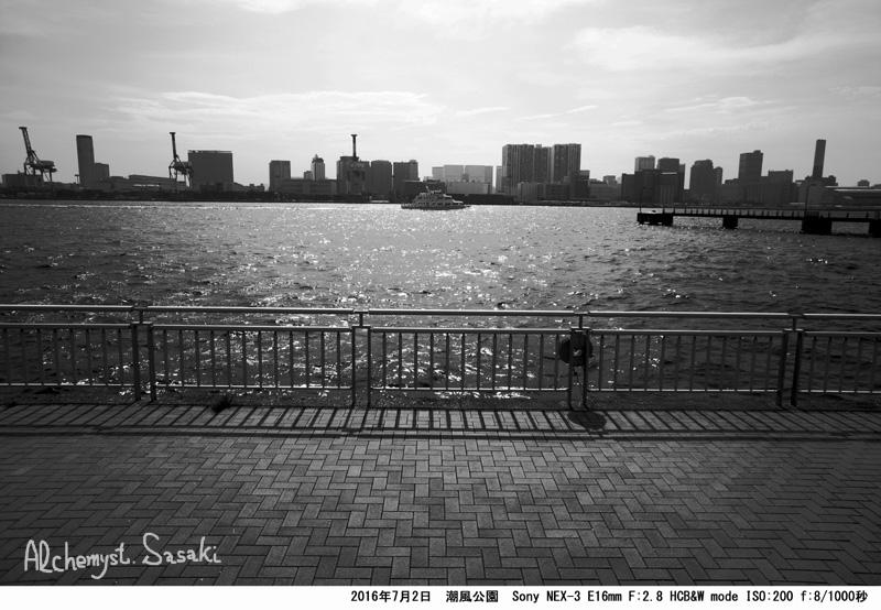 潮風公園DSC08869a